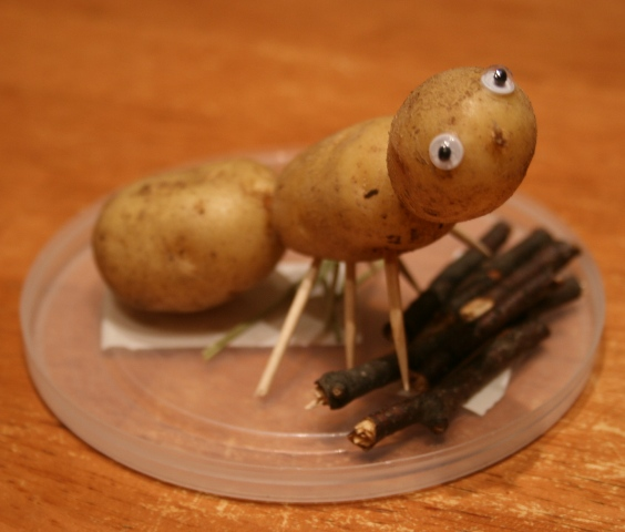 поделки из картофеля