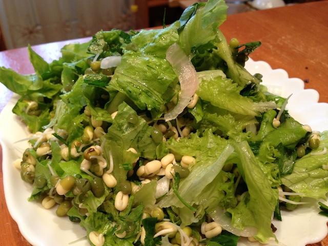 пророщенный маш с маринованным луком и листьями салата