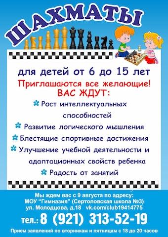 Реклама 2017 Шахматы колор